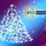 Si accendono le luci dell'albero di Natale in Piazza Europa donato dalla BCC